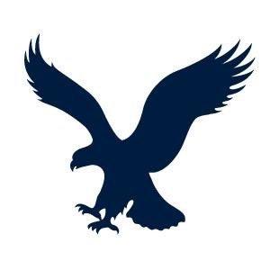 navy-eagle