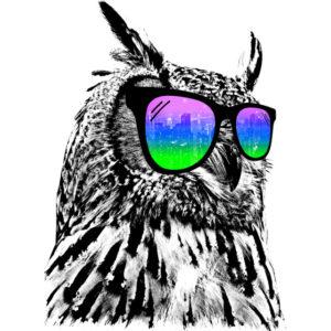 owl-cool